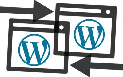 WordPress The Biggest Six Sin-Duplicate Content